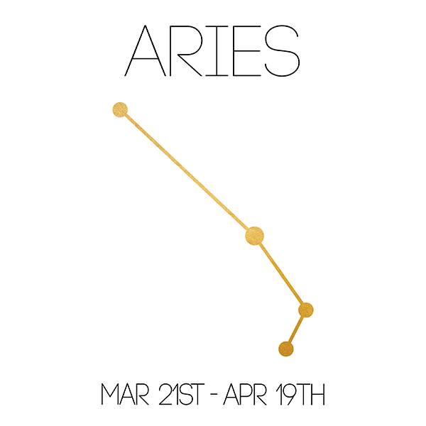 Aries_About_Website-01.jpg