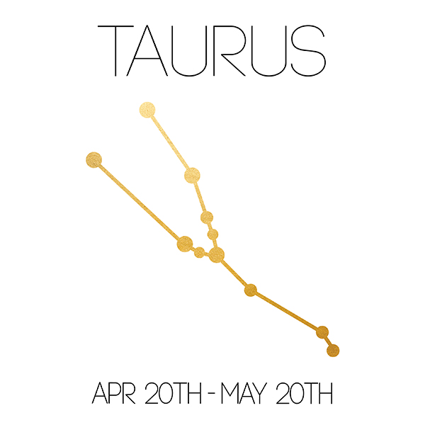 Taurus_About_Website-01.jpg