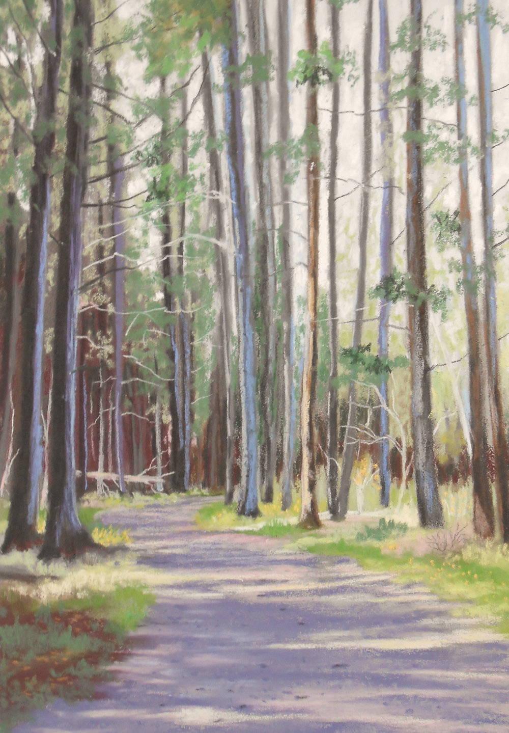 Let's Take a Walk  — Pastel: $400