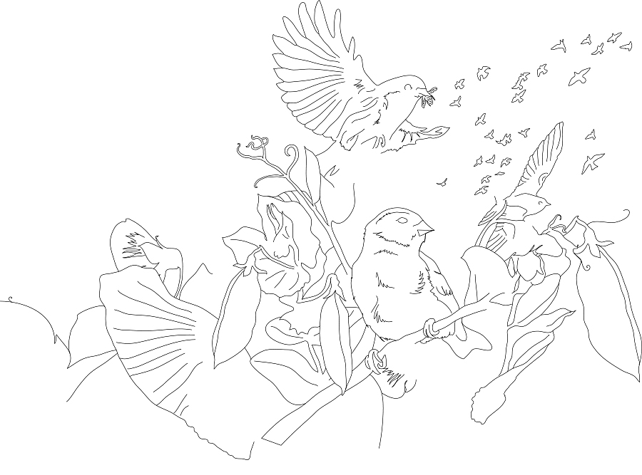 pod_birds.jpg