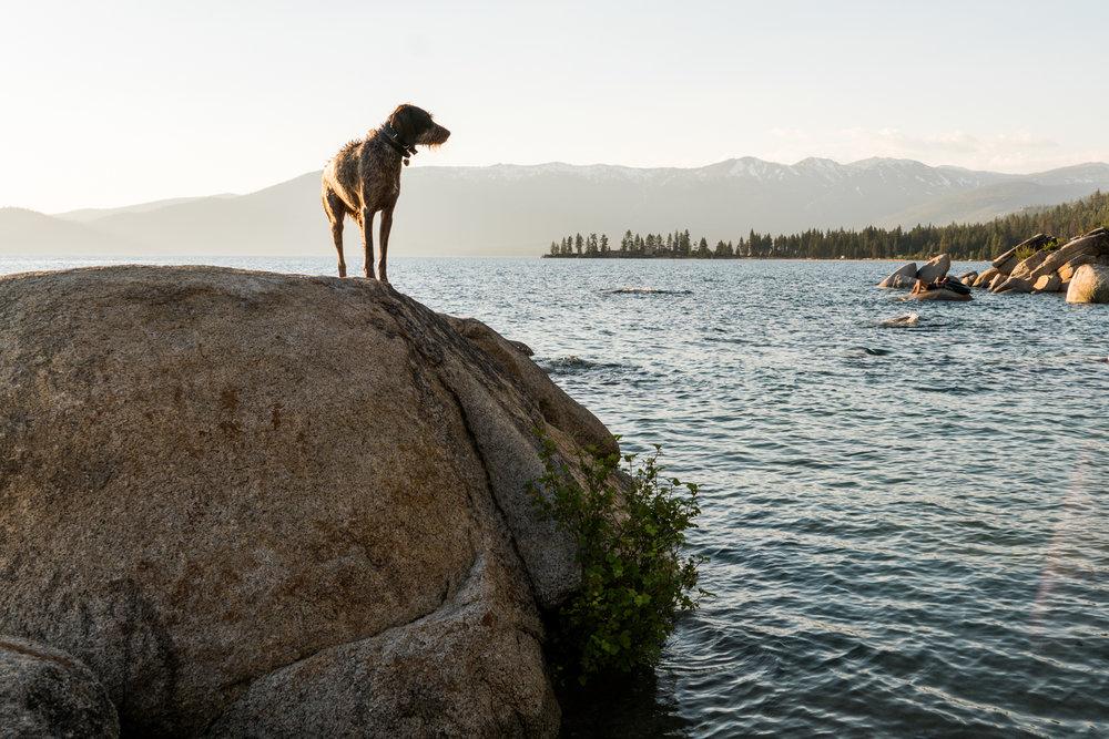 Summer-LakeTahoe-2.jpg