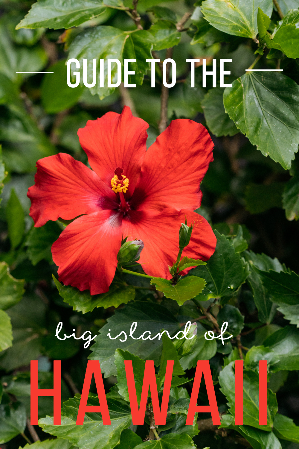 guide to hawaii big island