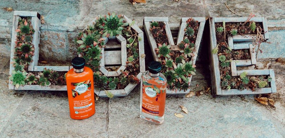 Laura Lawson Visconti Herbal Essences