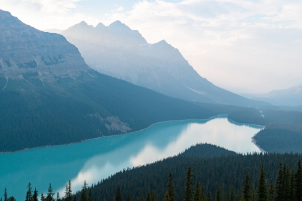 Banff Peyto Lake