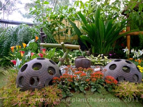 horticulture-2011-7.jpg