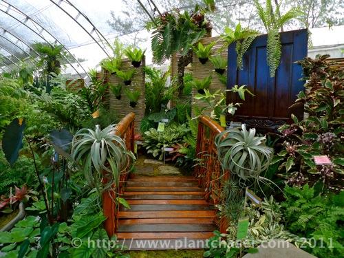 horticulture-2011-4.jpg