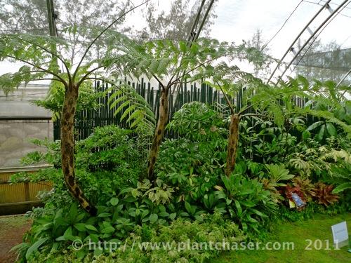 horticulture-2011-8.jpg