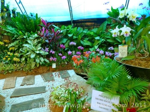 horticulture-2011-10.jpg