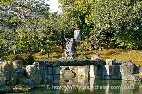 kyoto-nijo-ninomaru-6.jpg
