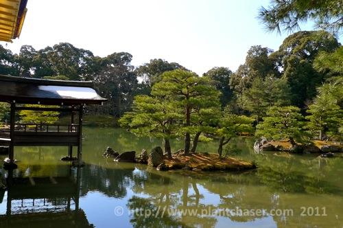kyoto-kinkaku-ji-golden-pavillion-3.jpg