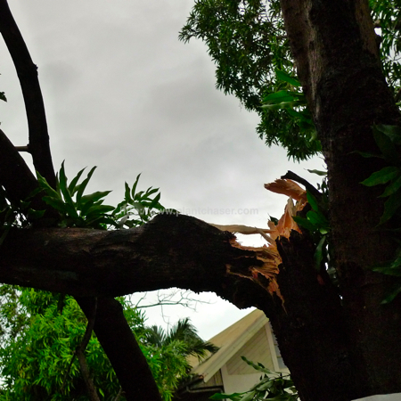 after-typhoon-basyang-6.jpg