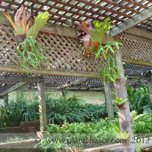 taman-botani-putrajaya-360.jpg