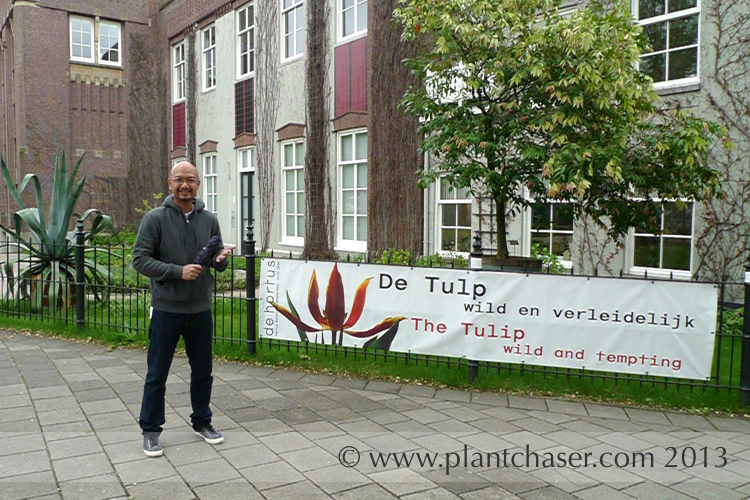 hortus-botanicus-amsterdam-002.jpg