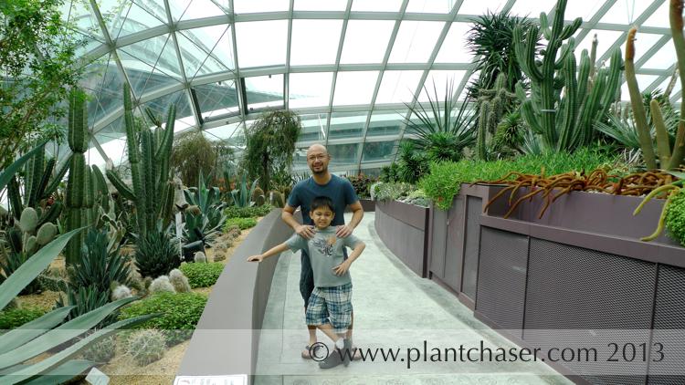 singapore-gardens-714.jpg