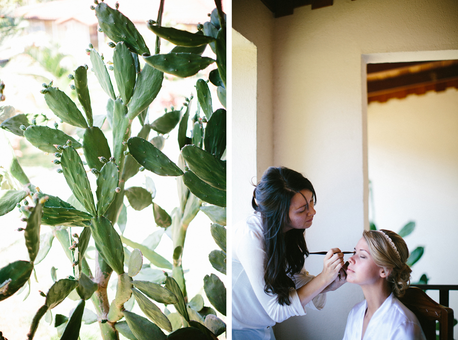 cactusmakeup.jpg