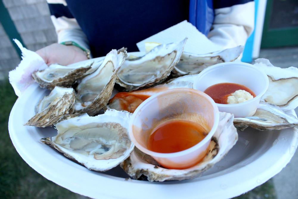 closeup oysters.jpg