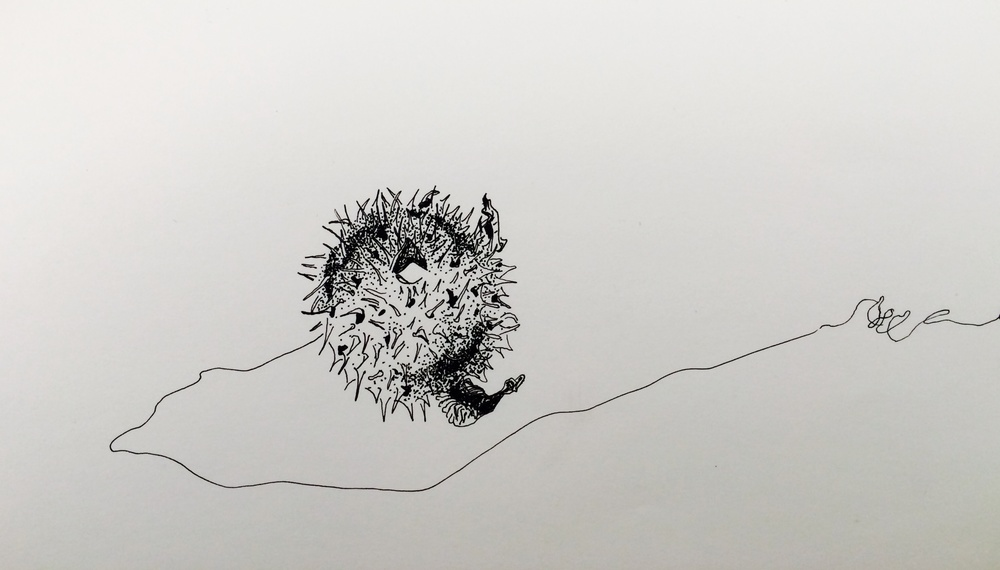A Drawing A Day, Day 9 - 8.28.14