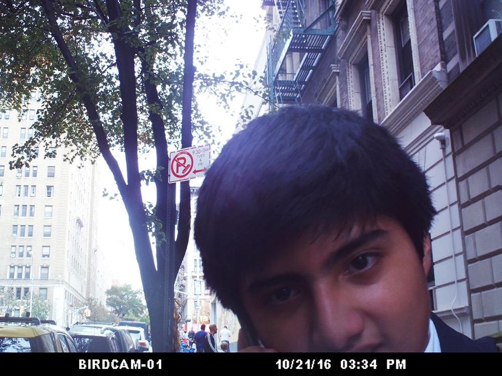 BIRDCAM00003 copy.jpg