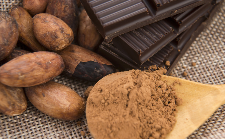 Making Your Own Chocolate from Bean to Bar