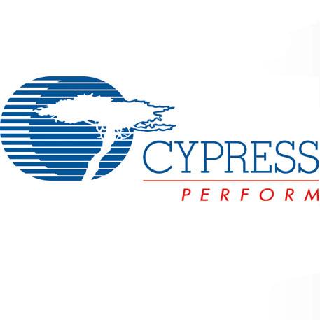 Cypress Micro logo web.jpg