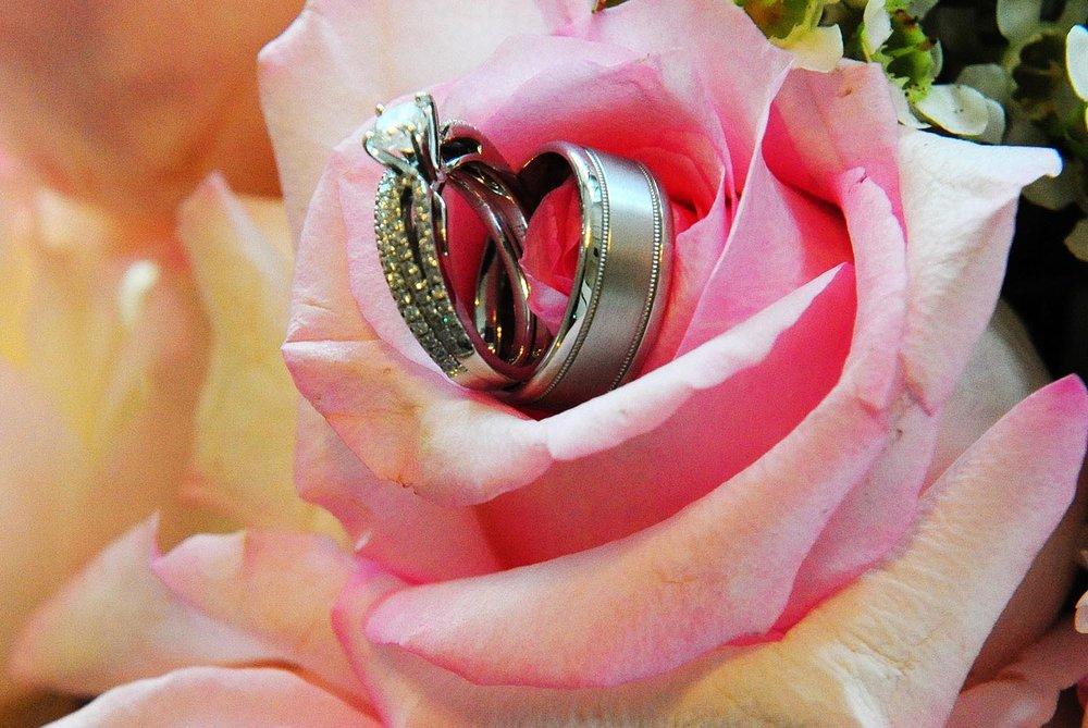 ringsinflowers.jpg
