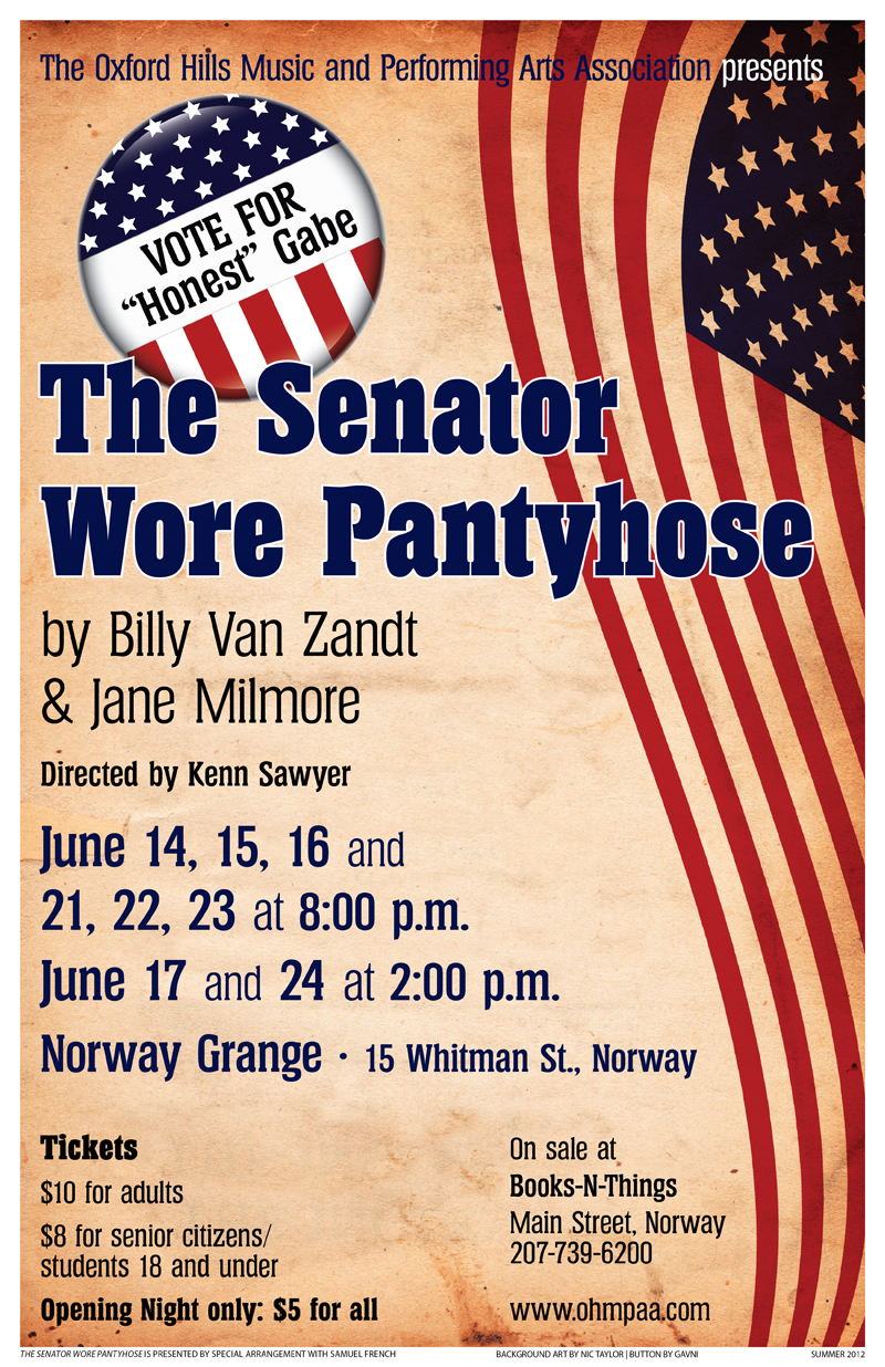The Senator Wore Pantyhose poster