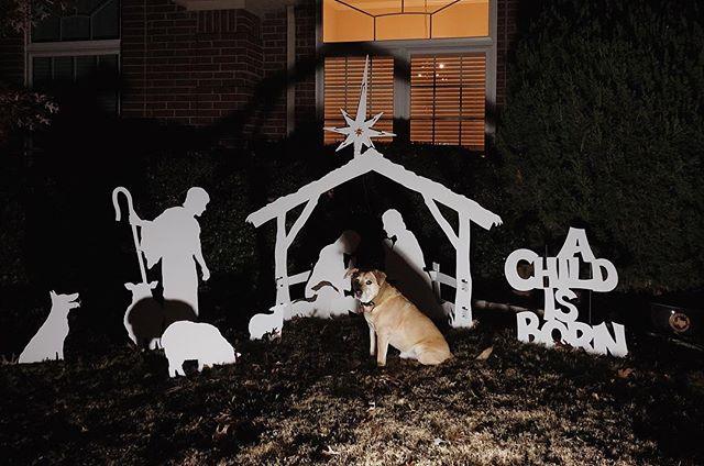 Guys, Merry Christmas!! . 🐶🎅🏻🇺🇸 #thepeoplespup #puppylife #mutt #rescue #seniordog #dogoftheday #puppy #vsco #vscocam #cuddlebuddy #dailyfluff #weeklyfluff #petsofinstagram #dogs_of_instagram #dogsofinstagram #pawcelebrity #christmas #merrychristmas