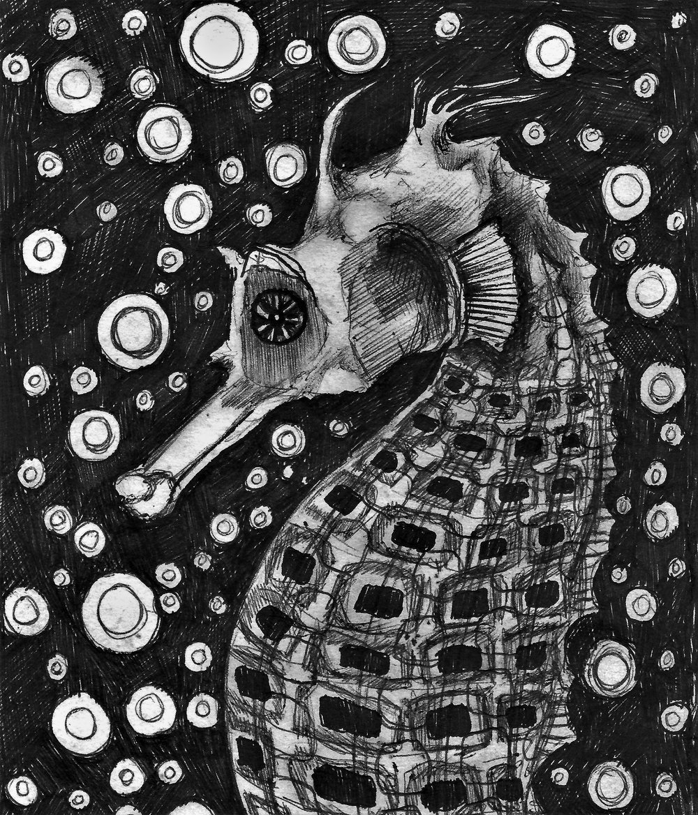 (Seahorse) pen on paper