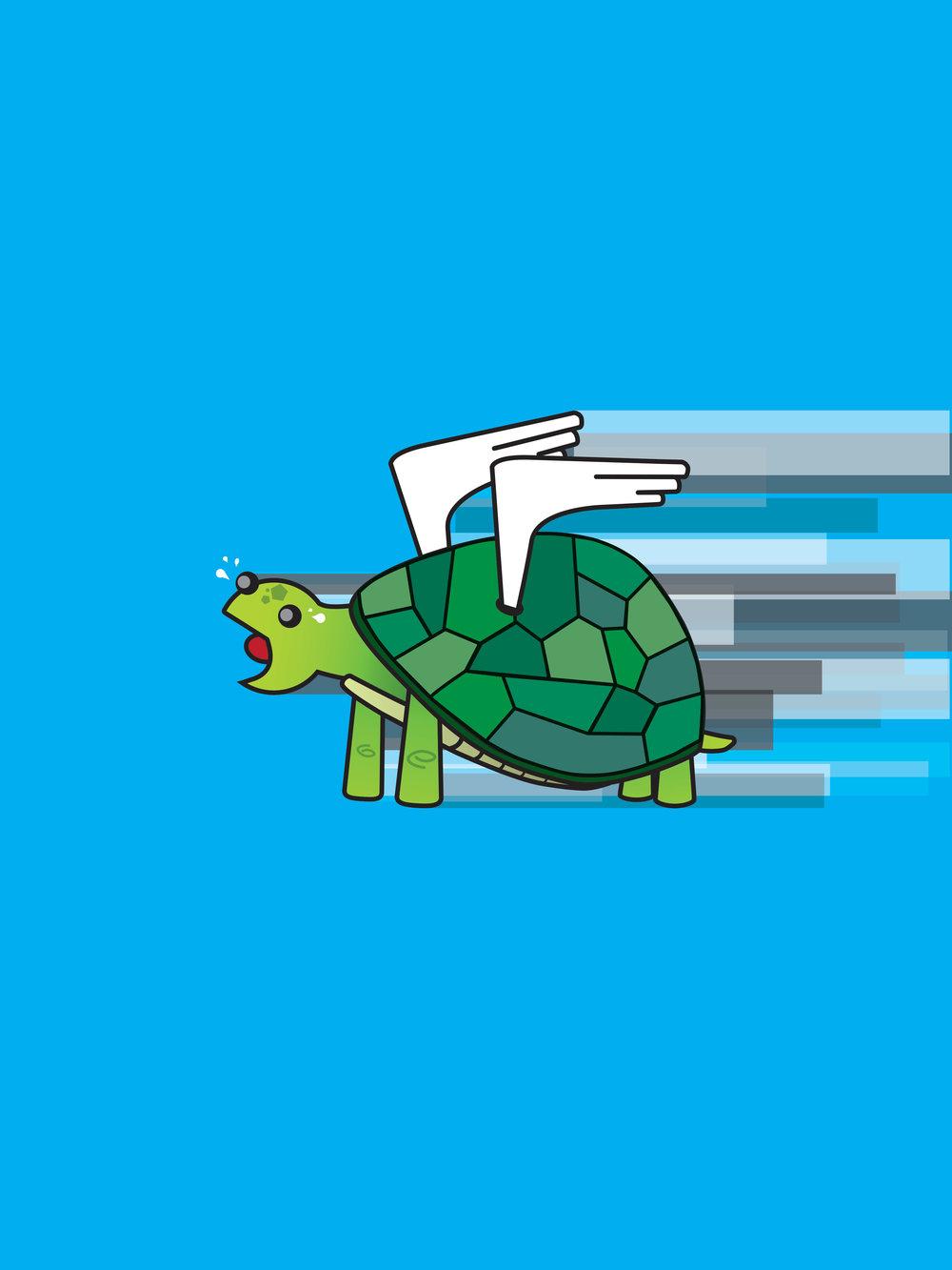 marc_turtle.jpg