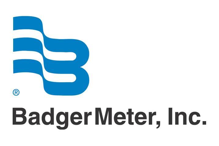badger meter.jpg