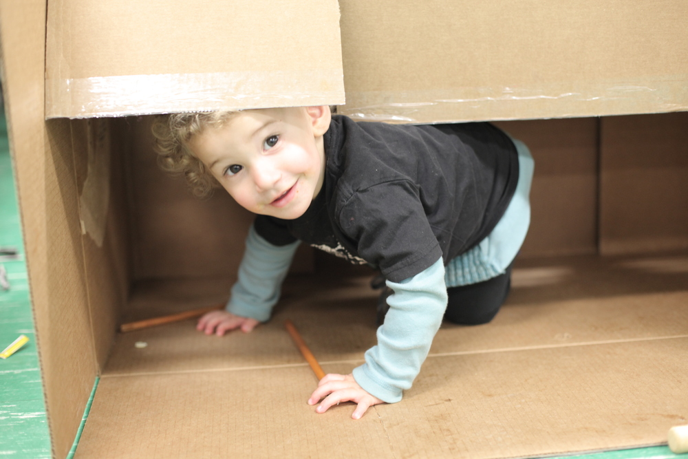 Little ones always love to get into cardboard boxes. We know this, yet every time it happens, the joy is renewed!