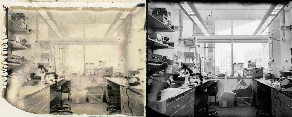 The positive back (left) and the negative slide made positive (right) of the New55 PN instant film.