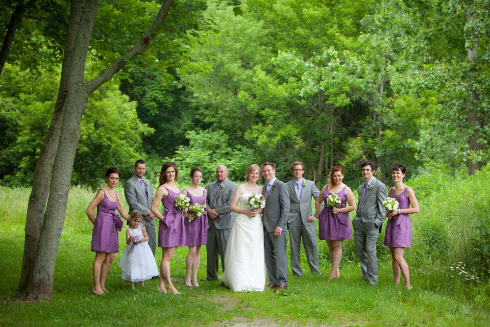 wedding party in Fonthill by Robert Nowell