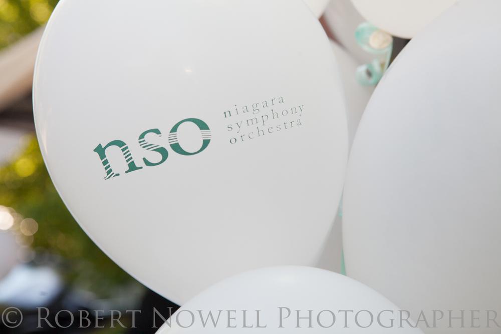 NSO garden party, photographer Niagara