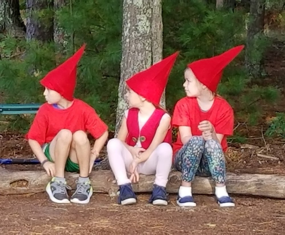 gnomes 2017.jpg