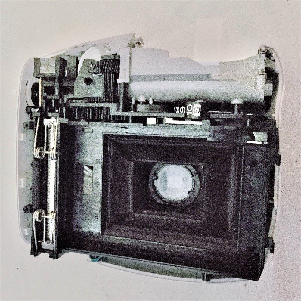 Polaroid Untamed.jpg