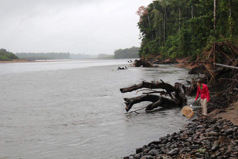 Dipnetting the Tambopata River in Peru. Photo by Kelsey Neam