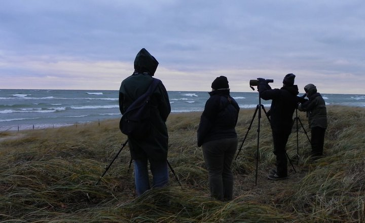 These birders are looking for waterfowl species in 42F temperatures and 40mph winds. Photo taken by Kirby Adams.