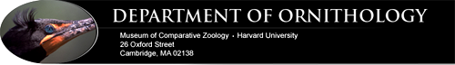 Click the banner to check out Dr. Edwards' website at Harvard!