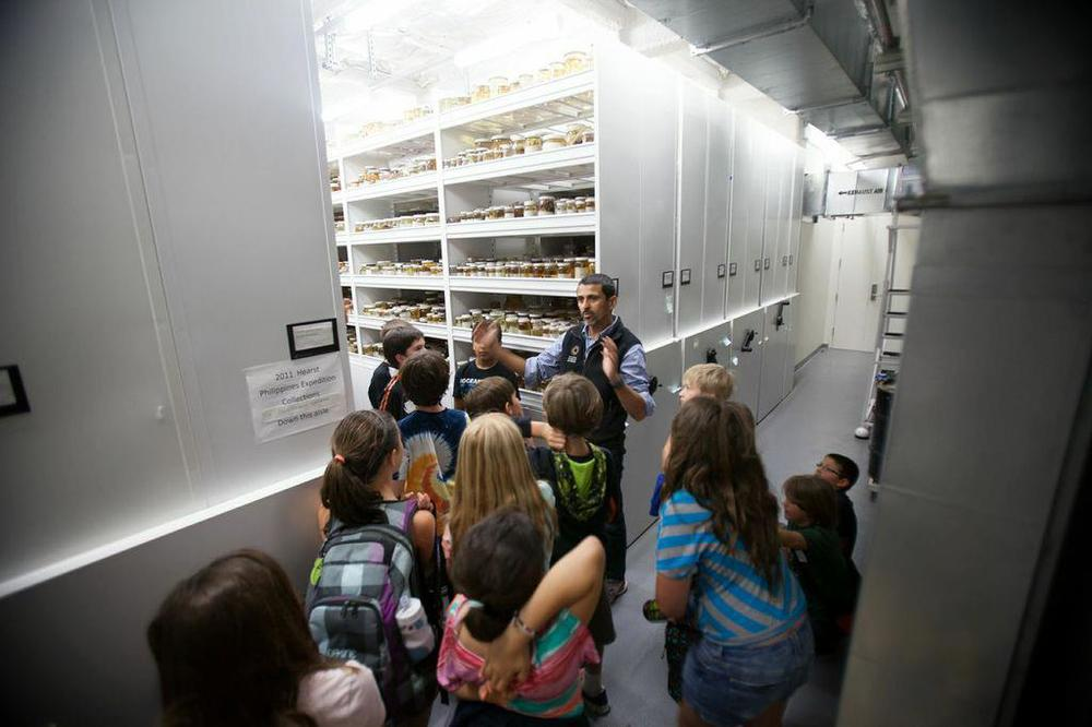 Dr. Luiz Rocha giving young ichthyologists a tour of the collection at CalAcademy!