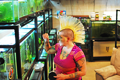 Rachel in her natural habitat- her fantastic fish room!
