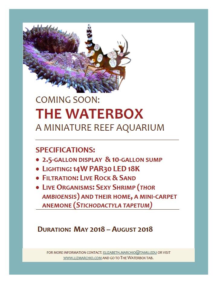 WaterBox Into PDF.jpg