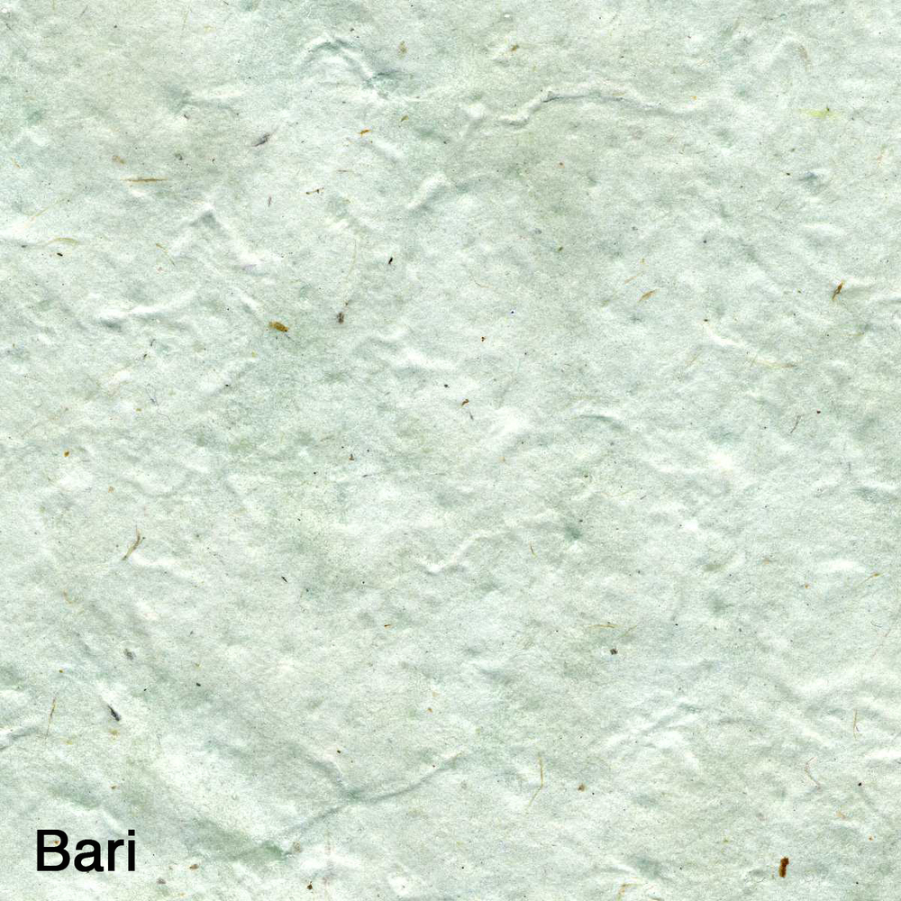 Bari001.jpg