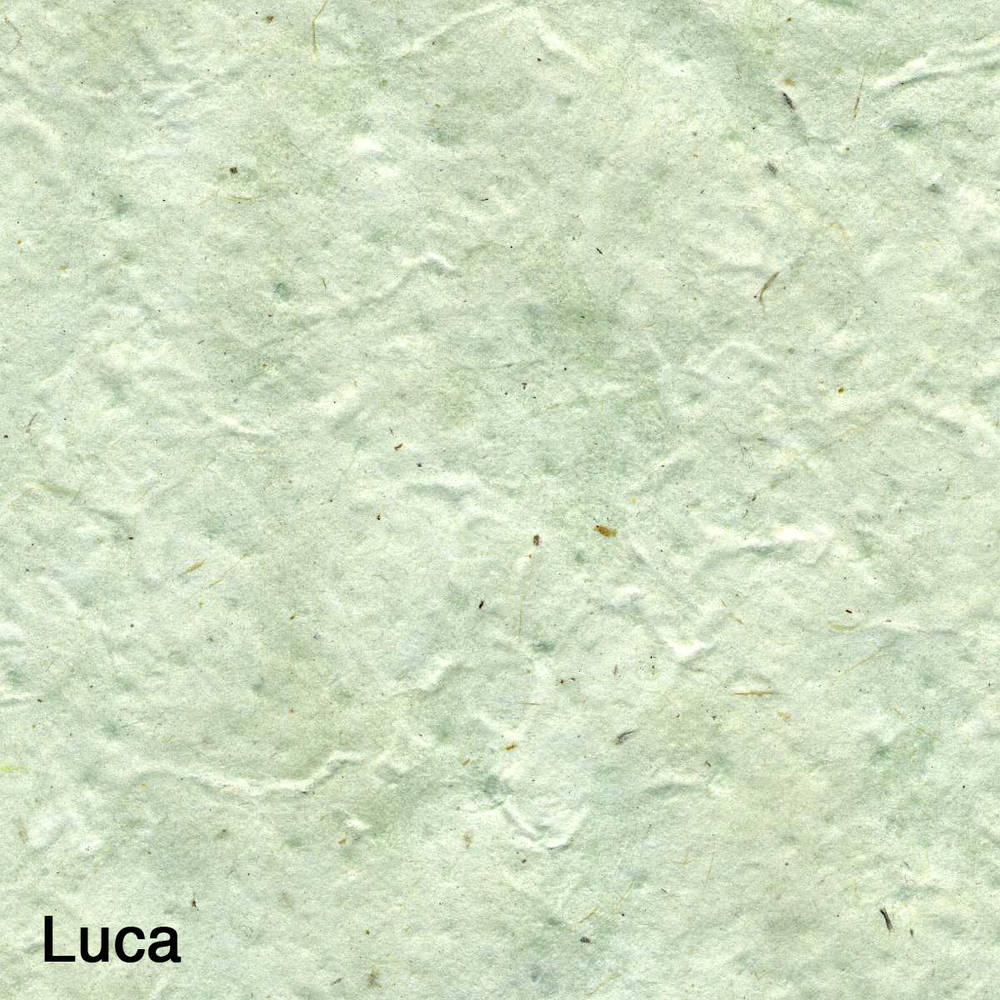 Luca001.jpg