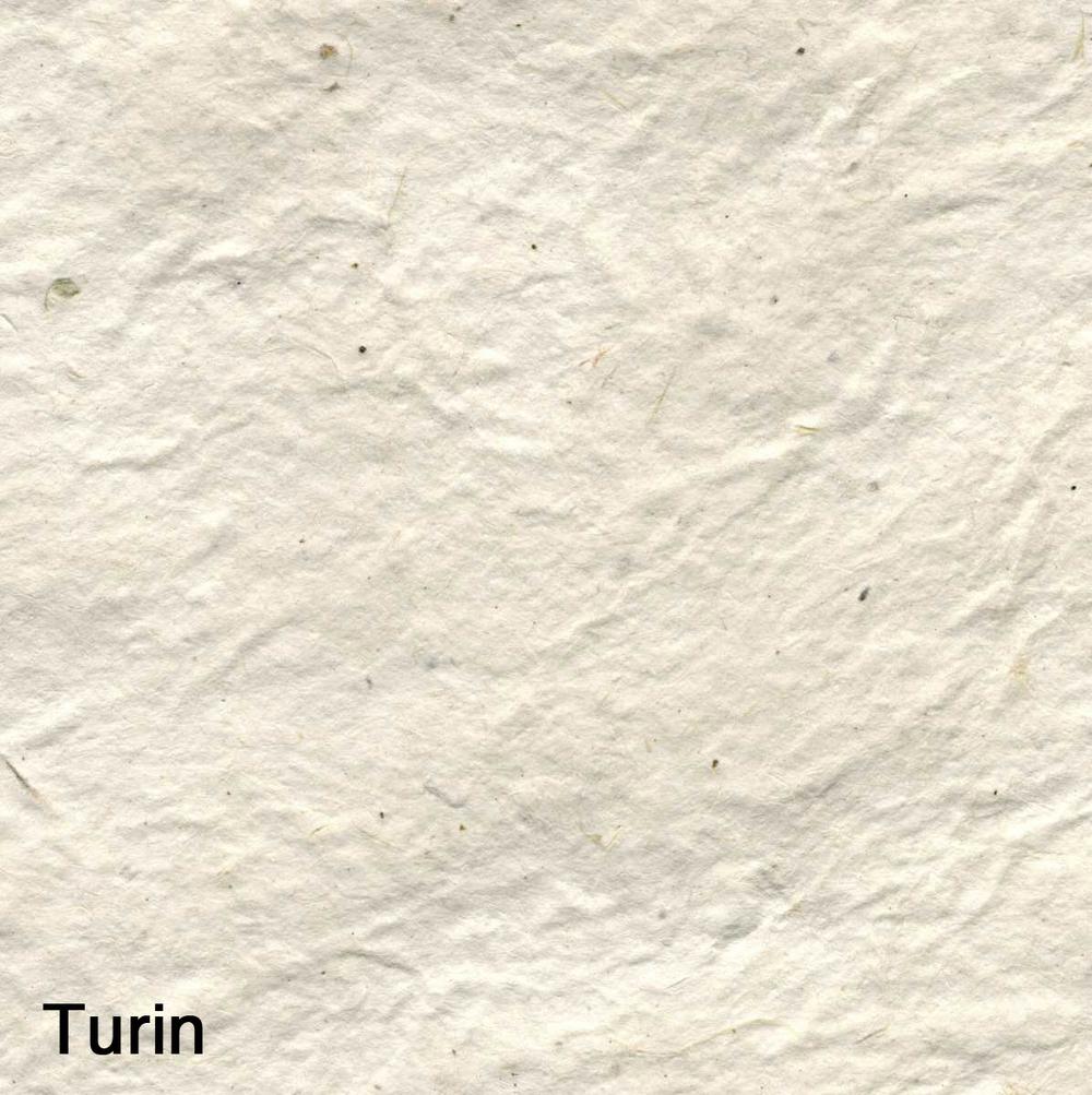 Turin005.jpg