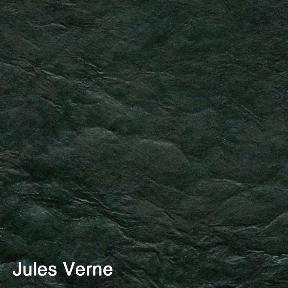 Jules Verne copy.jpg