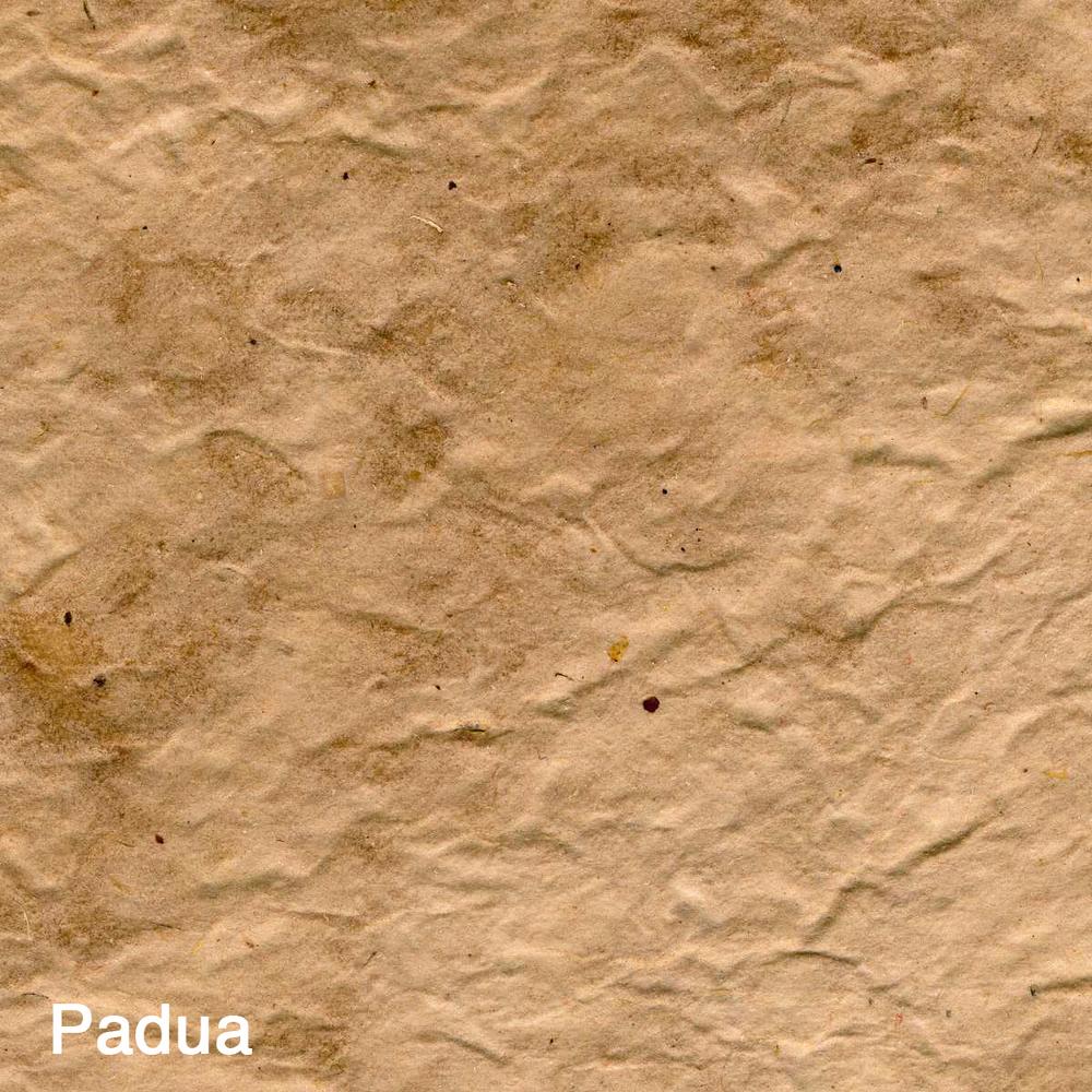 Padua005.jpg