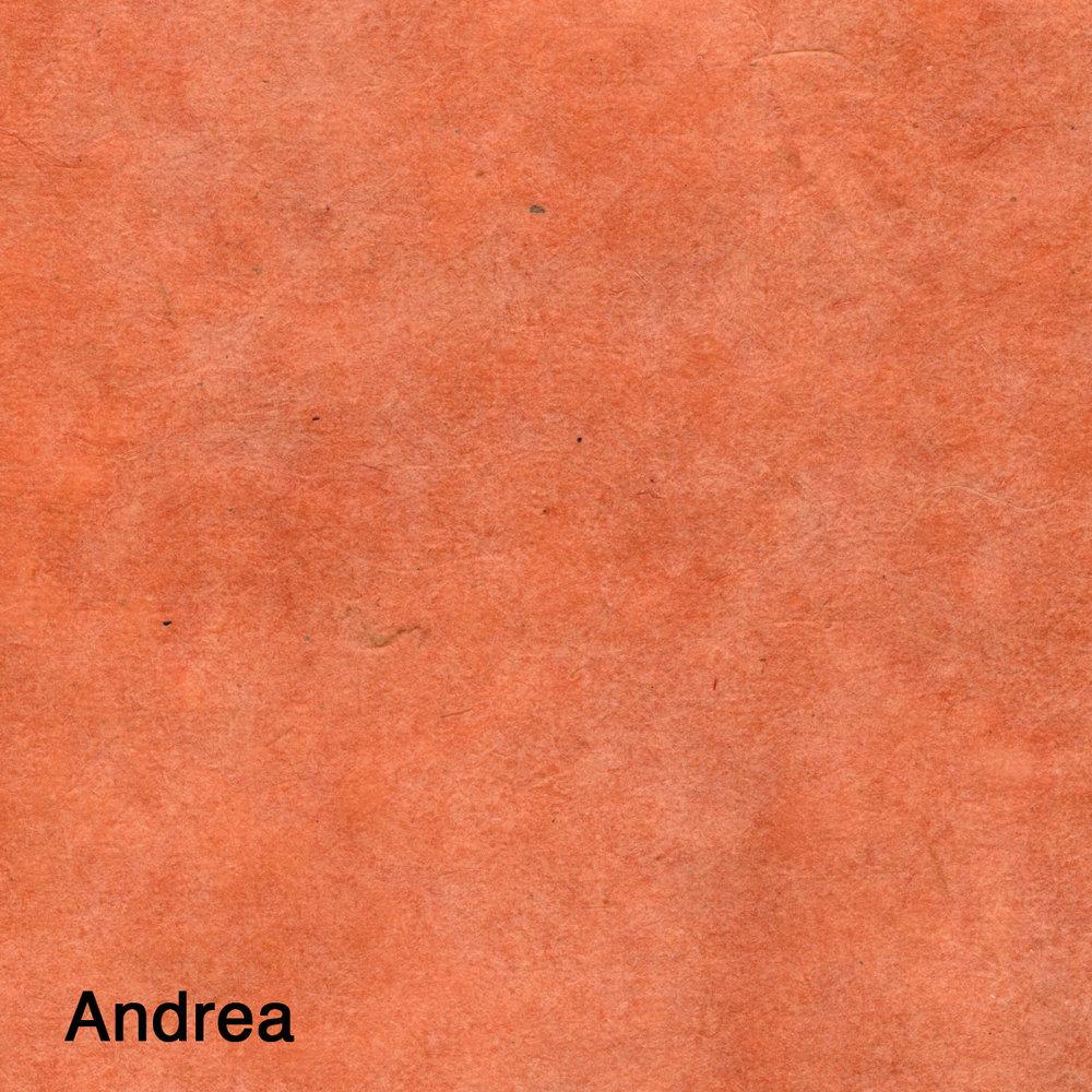 Andrea-2.jpg
