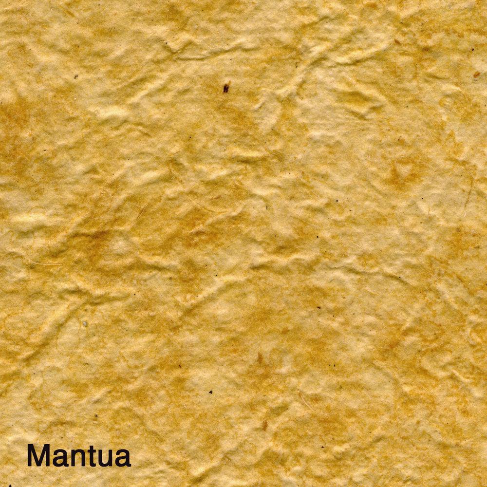 Mantua004.jpg
