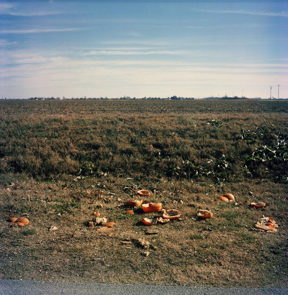 SmashingPumpkin.jpg